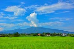 De wolken op de piek van berg gelijkend op de dampen van de vulkaan in Doi suthep in Chiang-MAI Stock Foto's