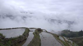 De wolken in de vallei pingelen dichtbij een rijst bewerkt stock videobeelden