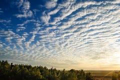 De wolken van de cirrus over het bos. royalty-vrije stock fotografie