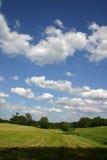 De wolken van de zomer Stock Fotografie
