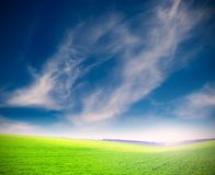 De wolken van Wispy over groen gras Stock Foto