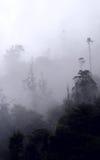 De wolken wikkelen de Andes Stock Fotografie
