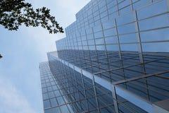 De wolkenkrabber van het glas met boom Stock Foto