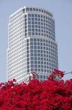 De Wolkenkrabber van Los Angeles Stock Foto