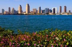 De wolkenkrabbers van San Diego Stock Foto's