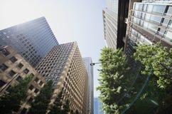 De wolkenkrabbers van Tokyo Stock Afbeelding