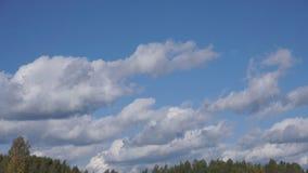 De wolkentijd, naadloze wolkenlijnen, de torenhoge lijnen van de de schommelingen naadloze wolk van Cumuluswolken, mooie witte wo stock video