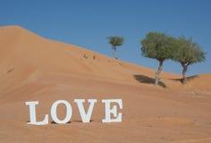 De Word Liefde in de Woestijn wordt gespeld die Royalty-vrije Stock Afbeeldingen