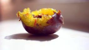 De worm in het fruit eet pruim stock videobeelden
