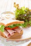 De worst van sandwichbologna stock afbeeldingen