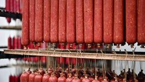 De worst van de vleesfabriek stock video