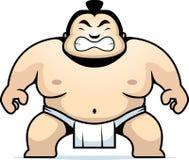 De Worstelaar van Sumo Royalty-vrije Stock Foto's