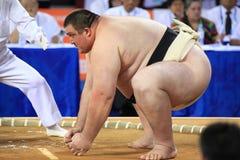 De worstelaar van Sumo klaar aan te vallen
