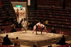 De worstelaars die van Sumo in lege arena praktizeren Stock Foto's