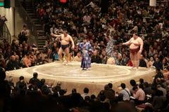 De worstelaars die van Sumo zout in de arena werpen stock fotografie