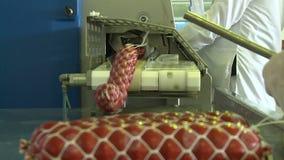 De worsten krijgen uit de machine stock footage