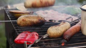 De worsten op de grill, gerookte vleespennen, hand neemt, rook, vlammenbarbecue, picknick, aard stock footage