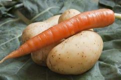 De wortel en de aardappels sluiten omhoog royalty-vrije stock foto's