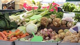 De wortel van de winter veggies Royalty-vrije Stock Fotografie