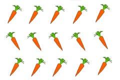 De wortelen zijn een wortelgewas royalty-vrije illustratie