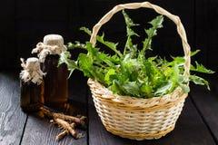 De wortels en de bladeren van paardebloem, tint en stroop in flessen royalty-vrije stock foto's