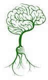 De wortels van de hersenenboom lightbulb Stock Fotografie