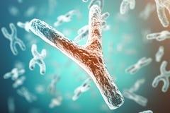 De x/y-chromosome, rouge au centre, concept de l'infection, mutation, la maladie, avec l'effet de foyer rendu 3d illustration stock