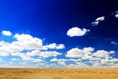 De Yadan landformsna och ökenlandskapet i tibetan platå Royaltyfri Bild