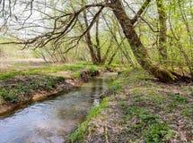 De Yazvenka-rivier die door het grondgebied van het Tsaritsyno-landgoed vloeien moskou Russische Federatie royalty-vrije stock foto's