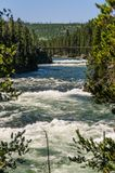 De Yellowstone-Rivier Stock Afbeelding