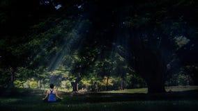De yoga stelt in park Stock Afbeelding