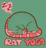 De Yoga van de rat Stock Foto