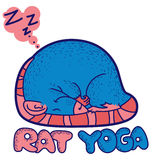 De yoga van de rat Stock Foto