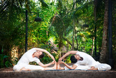 De yoga van het paar in de tuin royalty-vrije stock fotografie