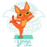 De yogakat stelt Yoga Cat Vector Yoga Cat Meme Yoga Cat Images Yoga Cat Position Yoga Cat Figurine Stock Afbeeldingen