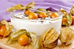 de yoghurt met physalis en chocolade bestrooit stock foto's