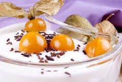 De yoghurt met physalis en chocolade bestrooit royalty-vrije stock afbeelding