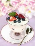 De Yoghurt van het fruit Stock Foto's