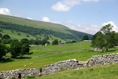 De Yorkshire dalarna Arkivbild