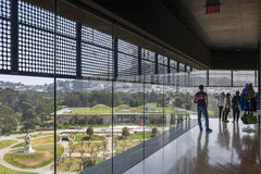 从de Young Museum内部Windows的看法  免版税库存图片