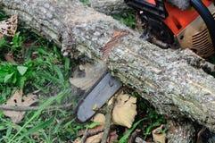De zaag die het hout snijden Royalty-vrije Stock Foto