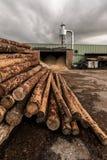De zaagmolen van het pijnboomhout met machines om hout te verwerken stock foto