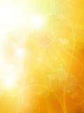 De zachte gouden, zonnige zomer of de herfstachtergrond Royalty-vrije Stock Afbeeldingen