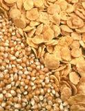 De zaden en de cornflakes van het graan Stock Afbeeldingen