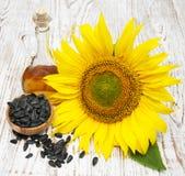 De zaden en de olie van de zonnebloem Stock Afbeeldingen