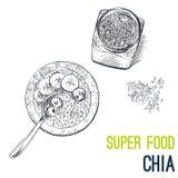 De zaden van Chia De super vector van de voedselhand getrokken schets Royalty-vrije Stock Afbeelding