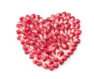 De zaden van de granaatappel Stock Afbeelding