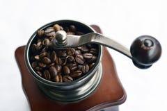 De zaden van de koffie Stock Afbeeldingen