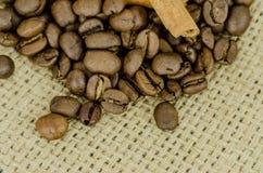 De zaden van de koffie Royalty-vrije Stock Foto