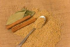 De zaden van de mosterd Stock Foto